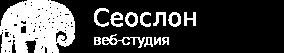 seoslon.com